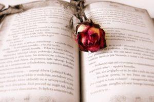 Światowy Dzień Książki i Praw Autorskich – ciekawostki!